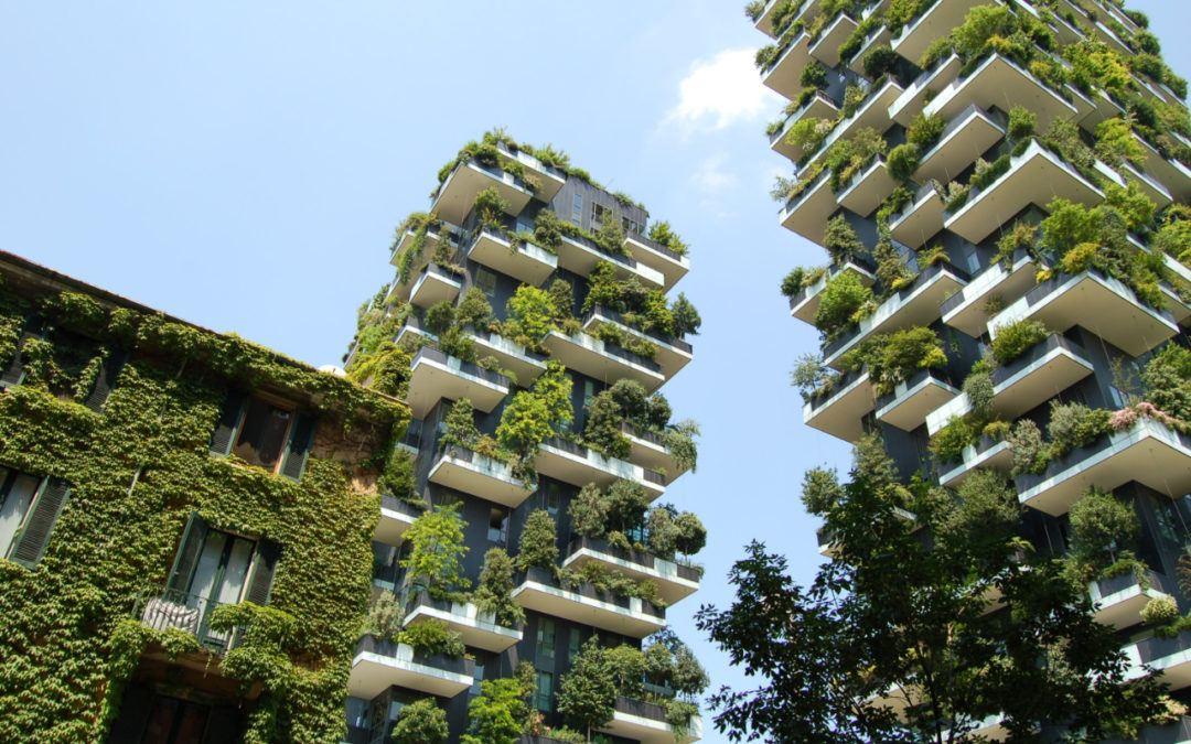 Nachhaltigkeit und IT: Teil 2 – Webdesign